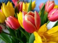 Поздравление с 8 мартом! 8 марта – международный женский день